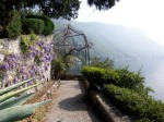 wisteria, hills and lake