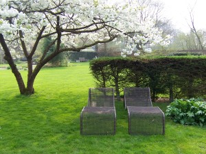 lounge chairs under cherry blossom