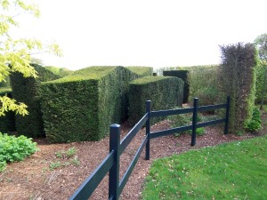 "layers of hedge ""blocks"""